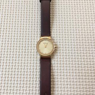 スカーゲン(SKAGEN)の週末限定価格‼️SKAGEN レディースウォッチ skw2175 (腕時計)