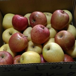箱込み7kg 規格外 りんご詰め合わせ(フルーツ)