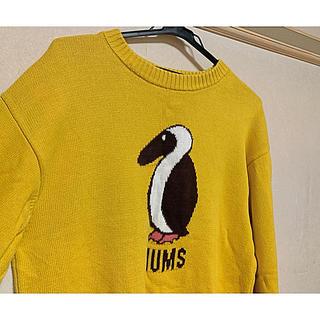 チャムス(CHUMS)のCHUMS ニット(ニット/セーター)