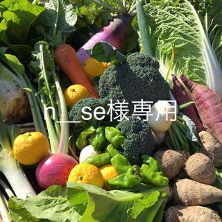 野菜BOX  Mサイズ n_se様専用(野菜)