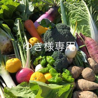 野菜BOX Mサイズ ゆき様専用(野菜)