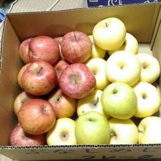 お得 規格外 りんご詰め合わせ 箱込み7kg(フルーツ)