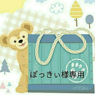 ディズニー(Disney)のぽっきぃ様専用(その他)