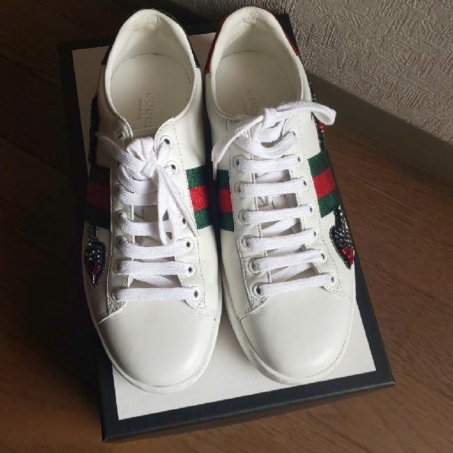 Gucci(グッチ)のグッチ 美品スニーカー レディースの靴/シューズ(スニーカー)の商品写真