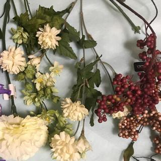 ※花材/春夏に向けたセット 5種(ドライフラワー)