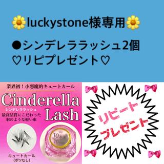 luckystone様専用♡(まつげエクステ)