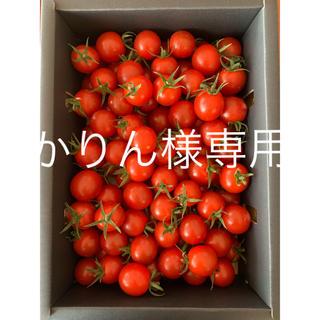 かりん様専用 完熟濃厚ミニトマト 2kg☆キャロルセブン☆ 農家直送(野菜)