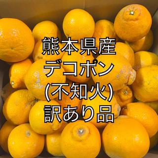 熊本県産 訳あり品 デコポン(不知火) 20k(フルーツ)