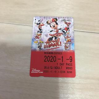 ディズニー(Disney)の1/9日乗車☆ディズニーリゾートライン☆ベリーベリーミニー☆使用済みチケット(キャラクターグッズ)