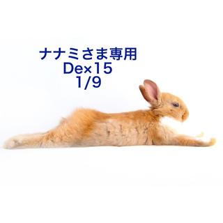 ★1/9★ナナミさま専用ページ 15(その他)