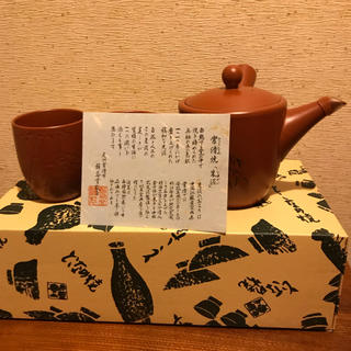 常滑焼  急須  茶碗2個セット(食器)