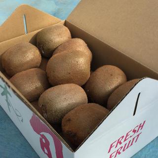 りんご様専用【二級品】和歌山県産キウイフルーツ 4L 18個入り(フルーツ)