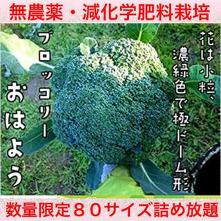 ききとらら様❤️(野菜)