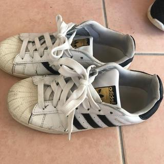 アディダス(adidas)のスクールシューズ(スクールシューズ/上履き)