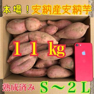 最終値下げ♪ たっぷり11kg  本場!熟成済み安納芋 S〜LL(野菜)