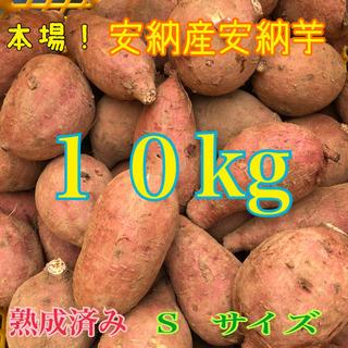 たっぷり10kg♪ 本場!熟成済み安納芋 S(野菜)