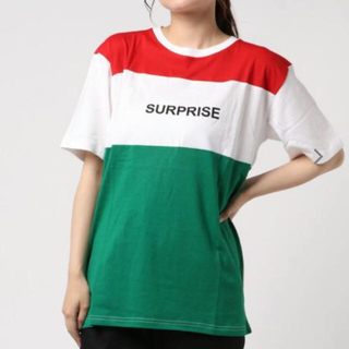 アドポーション(ADPOSION)のADPOSION *WEB店限定 切替カラー ブロッキング ロゴT Tシャツ(Tシャツ(半袖/袖なし))
