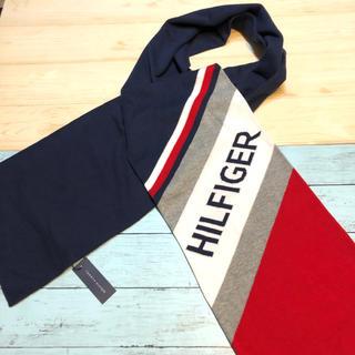 トミーヒルフィガー(TOMMY HILFIGER)の暖かい 新品 トミーヒルフィガー ロゴ ニット マフラー ストール ブランド 紺(マフラー/ショール)