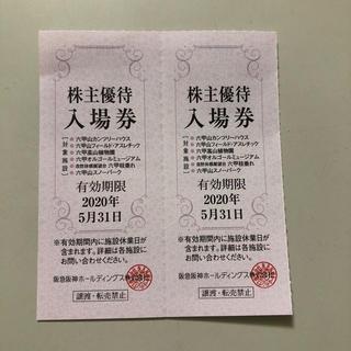六甲山スノーパーク 入場券2枚(スキー場)