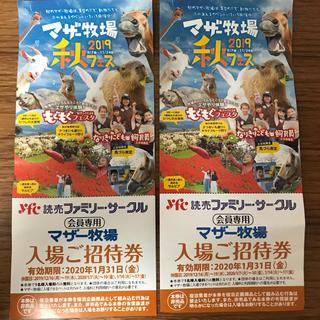 マザー牧場 招待券(動物園)