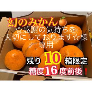 熊本県 幻の河内みかん 5kg  訳ありみかん5kg  セット(フルーツ)