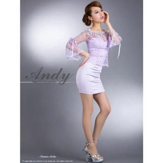 アンディ(Andy)のAndy アンディ ビジューと刺繍◎レースの袖付き サテンミニドレス ピンク S(ナイトドレス)
