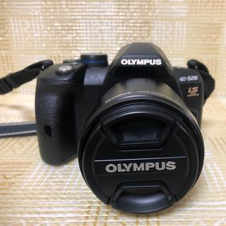 オリンパス(OLYMPUS)のオリンパスE520(デジタル一眼)