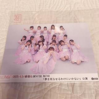 NGT48 - NGT48 劇場公演 生写真