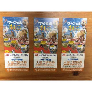 マザー牧場 招待券 3枚(遊園地/テーマパーク)