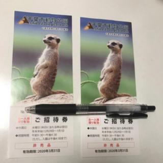 千葉市動物公園 招待券 2枚