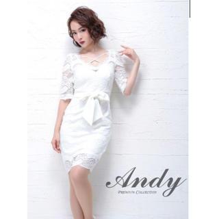 アンディ(Andy)のキャバ ドレス andy an ジャンマクレーン sugar メゾンドボーテ(ナイトドレス)