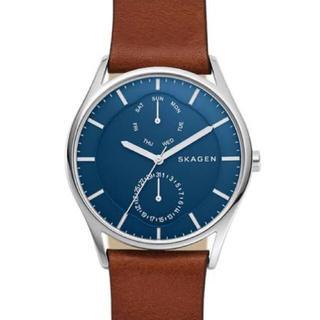 スカーゲン(SKAGEN)の腕時計 SKAGEN(腕時計)