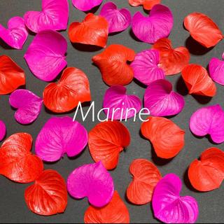 ハートリーフ ピンク レッド 30枚 バレンタイン ハーバリウム花材(ドライフラワー)
