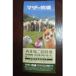 マザー牧場 招待券(遊園地/テーマパーク)