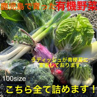 鹿児島で育った有機野菜詰め合わせ 100サイズ(野菜)