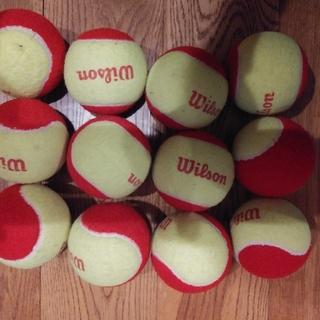 ウィルソン(wilson)のウィルソン Wilson レッドボール テニス ジュニア(ボール)