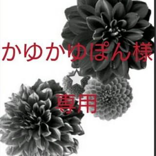 アンティカ(antiqua)のかゆかゆぽん様⭐専用【3点お纏め】(シャツ/ブラウス(長袖/七分))