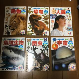 小学館 - マクドナルド 図鑑