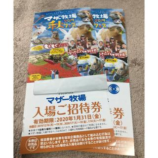 マザー牧場 無料ご招待券 チケット 2020/1/31迄 ☆送料無料☆ 2枚 (遊園地/テーマパーク)