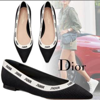 ディオール(Dior)のChristian Dior 刺繍入り バレエシューズ(バレエシューズ)