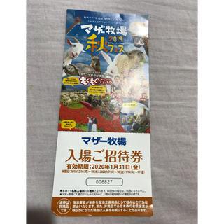 千葉県にあるマザー牧場の無料招待券です(遊園地/テーマパーク)