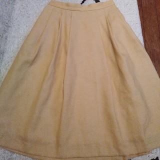 テチチ(Techichi)のTechichiのフレアスカート(ひざ丈スカート)