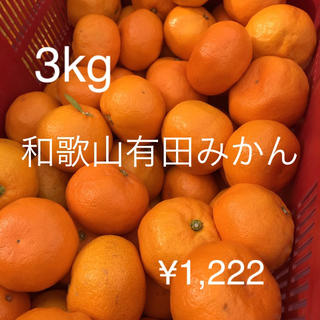 和歌山有田みかん 3キロ混合 訳あり(フルーツ)