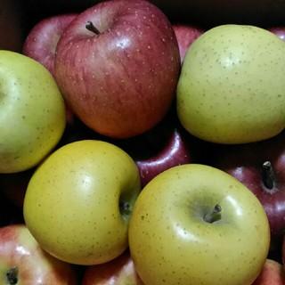 規格外 箱込み5kg りんご詰め合わせ(フルーツ)