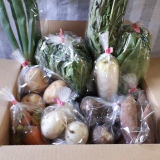 野菜詰め合わせ60サイズ(農薬不使用栽培)福岡産(野菜)