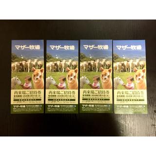 マザー牧場招待券【4枚バラ売り希望の方はコメントください。】(遊園地/テーマパーク)