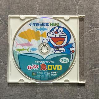 小学館 - 小学館の図鑑NEO DVD