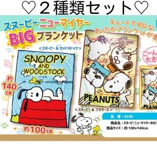 スヌーピー(SNOOPY)の新品未使用 スヌーピー SNOOPY BIGブランケット 毛布 2種類セット(毛布)