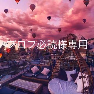 キャンメイク(CANMAKE)の【専用】キャンメイク アイシャドウ 4点(アイシャドウ)