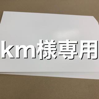 光沢紙100枚 マット紙160枚(その他)